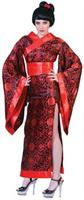 Geisha Costumes Medium