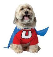 Superhero Unisex (Adult) Costumes