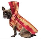 Dress Your Pet Day Funny Humorous  Costumes