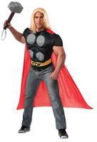 Marvel Costumes Large
