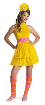 Tween Big Bird Costume