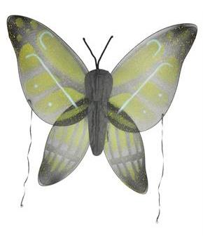 Wings Child Buttrfly Yellow Green