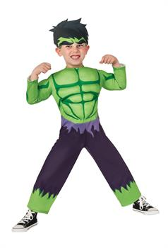 Incredible Hulk Toddler Costume