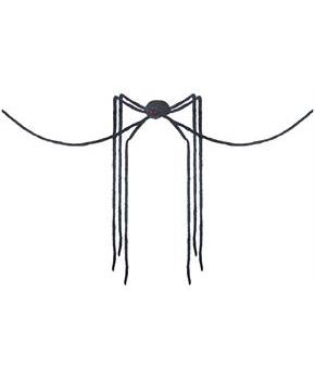 Black Spider Decoration