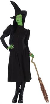 Women's Wicked Elphaba Witch Costume