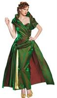 Cinderella Lady Tremaine Costume