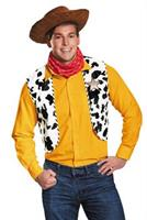 Toy Story Woody Adult Costume Kit