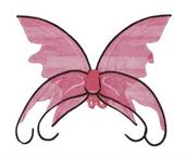 Butterfly Pink Wings With Black Trim