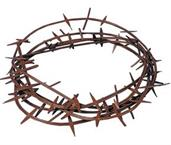 Unisex Crown Of Thorns