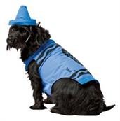 Blue Crayon Pet Costume