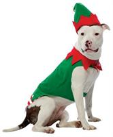 Pet Costume Elf