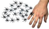Spider Ring Bag Of 144 Equal 1