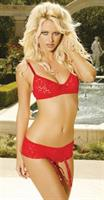 Demi Bra/Shorts/Garter Red