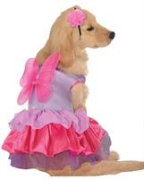 Pixie Pet Costume