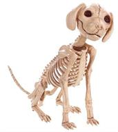 PUPPY SITTING SKELEBONES