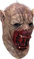 Zombie Runs & Walks Masks