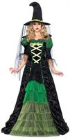 Women's Storybook Witch Costume