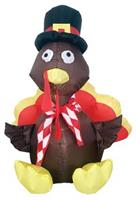 Inflatable Turkey 4 Ft Led Light